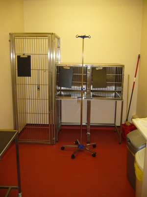 Barton Veterinary Centre Isolation Room